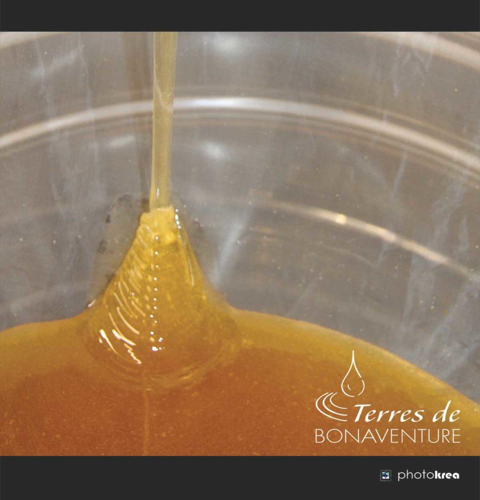 miel-de-lavande-bio