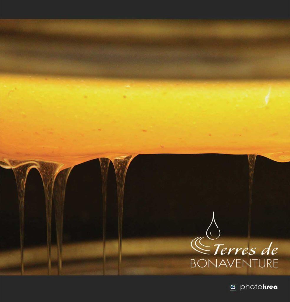 miel-de-lavande-bio-valensole