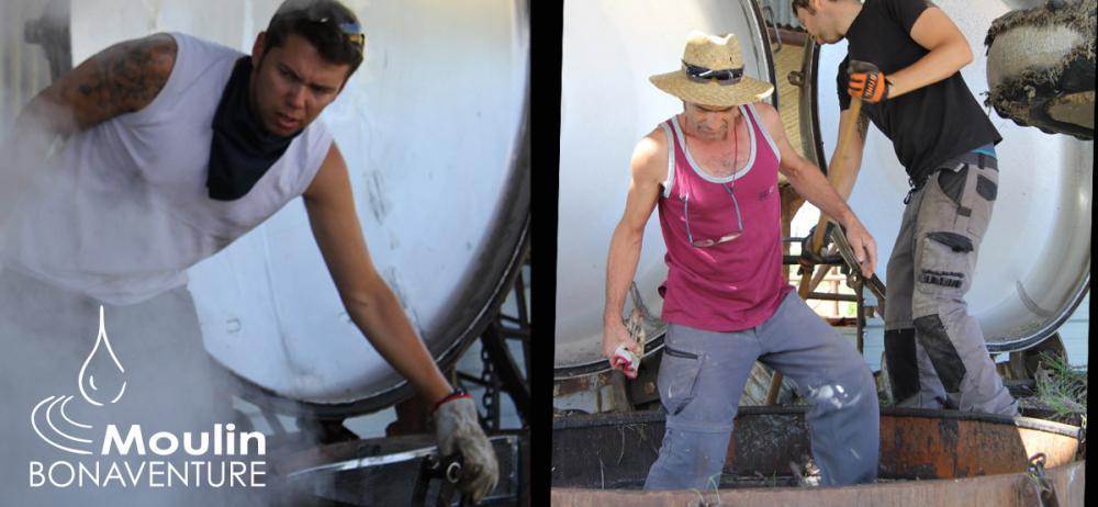 lavender oil distillation